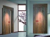 Transparent Interior Door With Built-In LEDs | DigsDigs