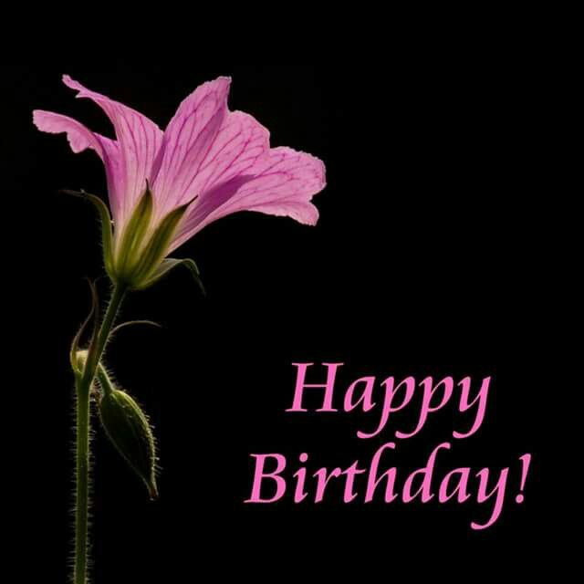 Birthday Flowers For Niece: 119 Best BIRTHDAY NIECE Images On Pinterest