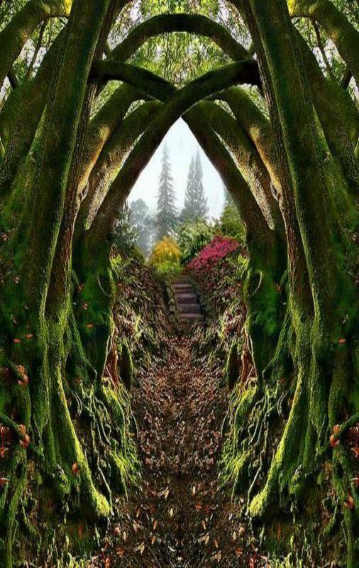 Oregon:Entrance to the Secret Garden, Portland, Oregon