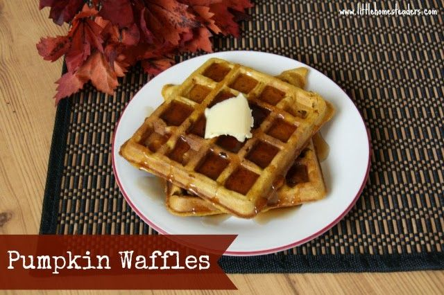 Five Little Homesteaders: Pumpkin Waffles