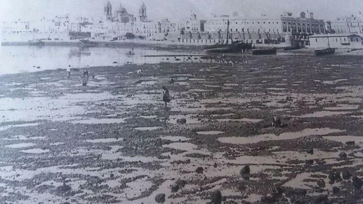Puerto Piojo. La pequeña ''marisma'' de fangos junto al muelle y la muralla se le conocía como Puerto Viejo. Actualmente son la Plaza de España y parte del barrio de San Carlos.