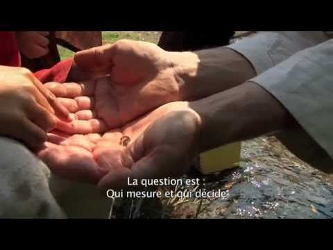 Etre et devenir - Rencontre avec Céline Alvarez - YouTube