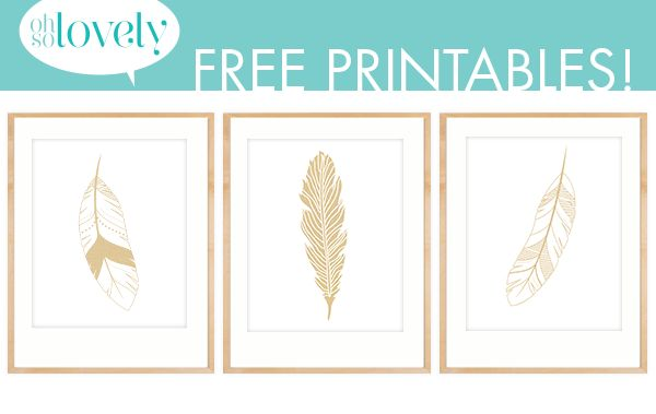 Oh So Lovely: 3 gorgeous DIY decor ideas using feathers and 3 FREE gold feather printables