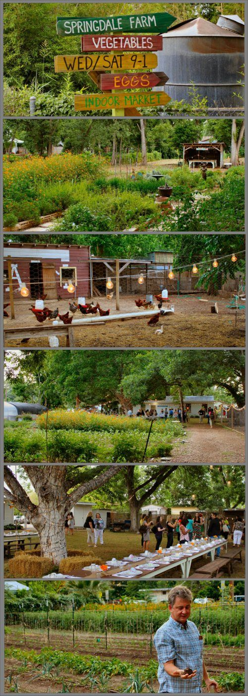 Springdale Farms in Austin, Texas - farm, produce stand & Eden East restaurant