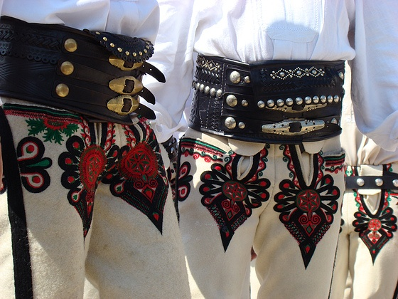 Parzenice - traditional motifs embroidered on the trousers of men from Podhale region, Poland.