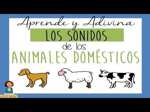Aprende y Adivina los sonidos de los animales domésticos y salvajes_Juego educativo para niños - YouTube