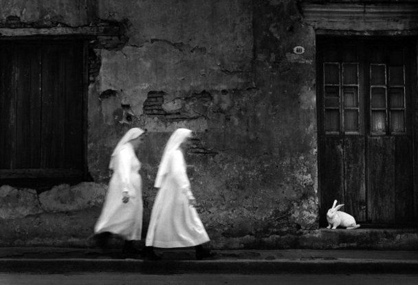 Black and white photography pedro luis raota