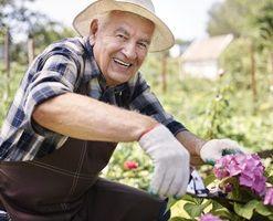 Flexible Dental Insurance Plans for Seniors Throughout Wisconsin