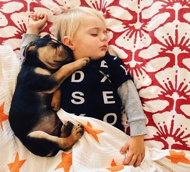 A mãe de três filhos Jessica Shyba vem tirando fotos de seu filho Beau com o cão adotado Theo desde a primeira vez em que ela viu os dois dormindo juntos.