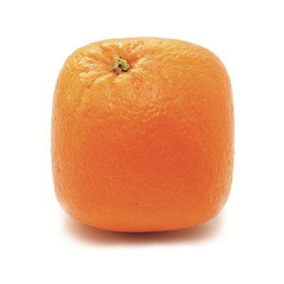 ~ Square Orange ~ #orange #fruit #square #design #creative
