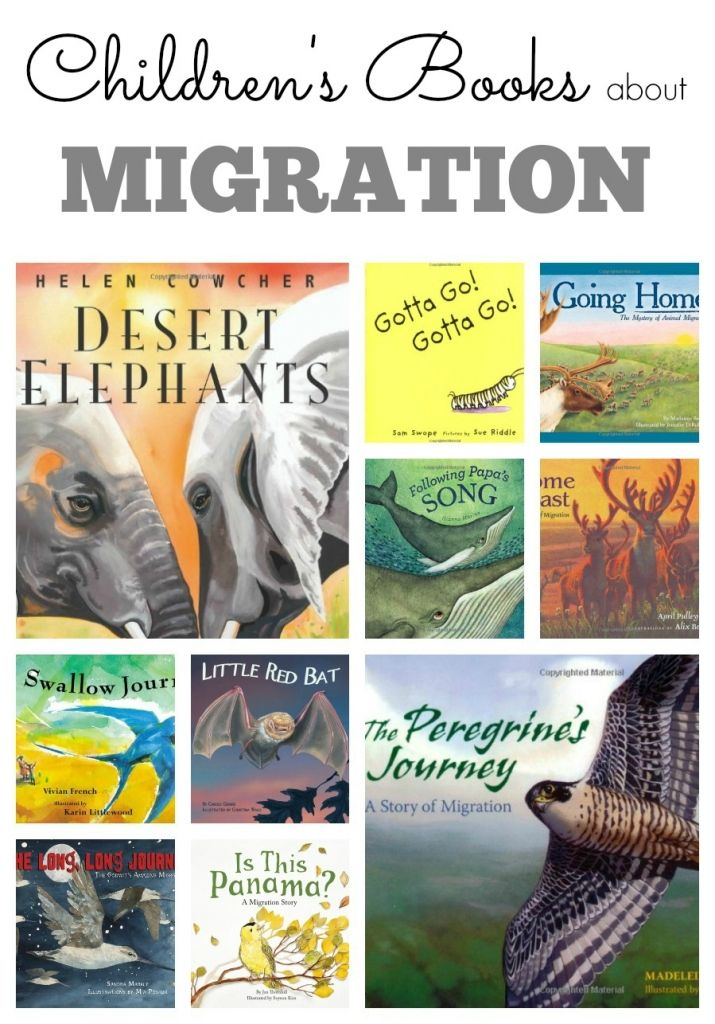 Childrens Books about Migration