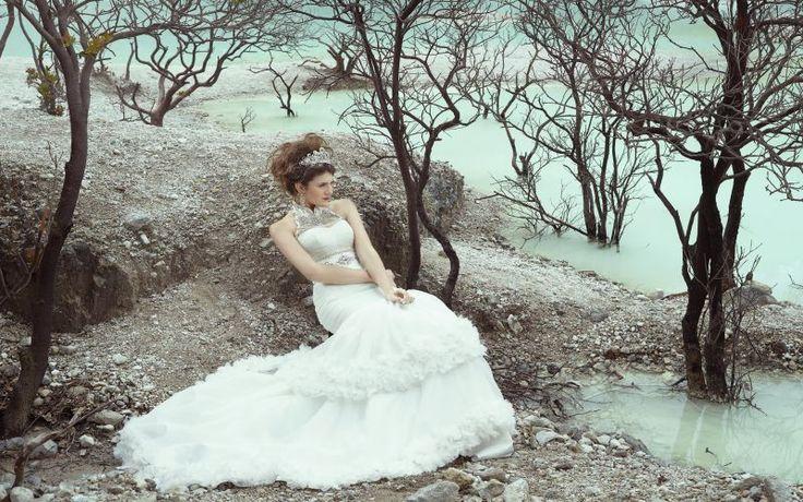 Inspirasi Tata Rias Rambut Updo Pernikahan yang Cantik