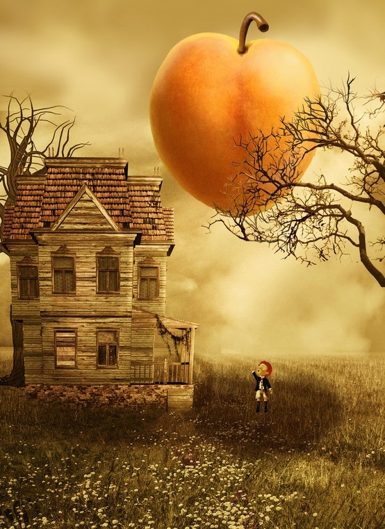 James and the giant peach pretty things pinterest