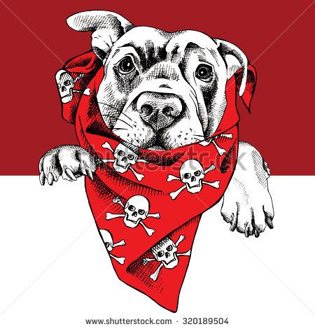 Portrait of a dog labrador in red neckerchief with image of skulls. Vector illustration.