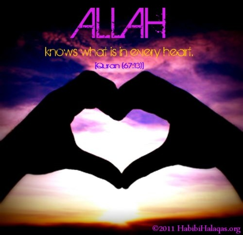 """Allah knows what is in every heart"" Surah Al-Mulk(67): 13"