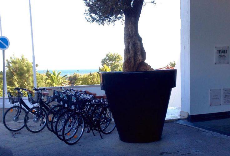 Hotel Tivoli Marina Vilamoura, Algarve
