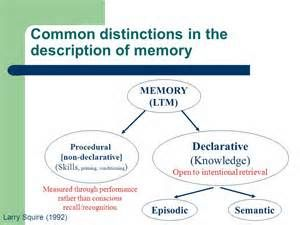 difference between procedural memory and declarative memory - -Greater impairment in declarative memory associated with MILD Neurocognitive Disorder