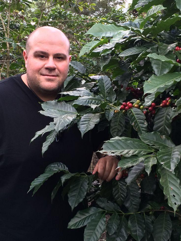 Mr Di Bella at a coffee plantation in Costa Rica