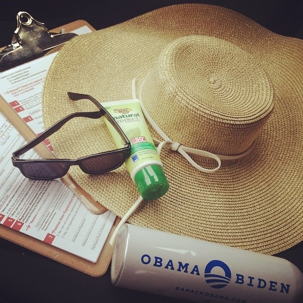 Voter Registration essentials. May Day of Action - 23 by Obama For America - Virginia, via Flickr