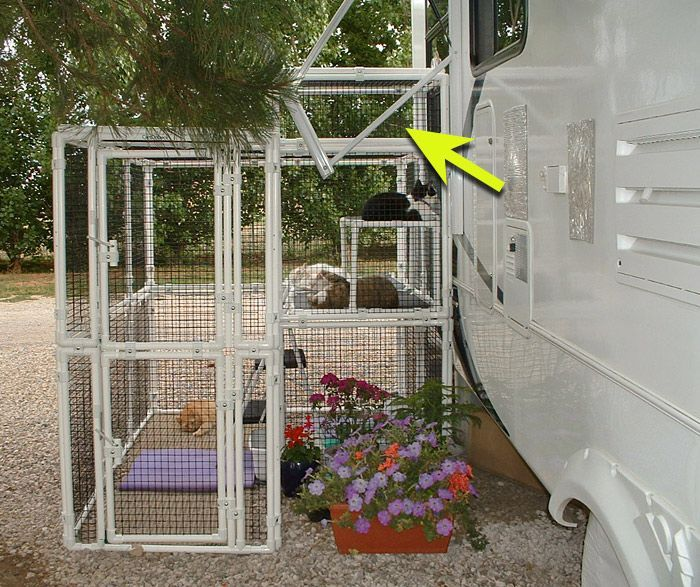 Rv Cat Enclosure My Mostly Dog Pet Board Pinterest