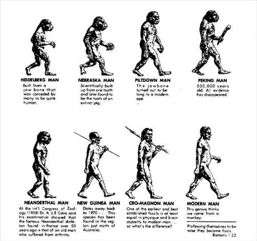 best week de evolutie images charles  evolution of man essay the evolution of evolution dickinson college wiki