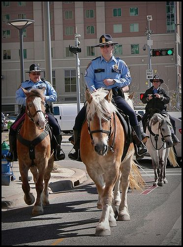 Downtown  Mounted Police Retired Horses March