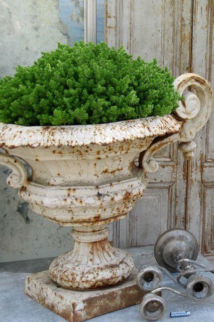 love old urns..