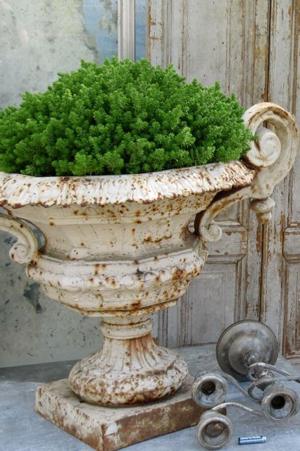 Cast iron urns turn rusty and shabby and yet look so classy...!Gardens Ideas, Modern Gardens, Gardens Design Ideas, Gardens Urns, Plants, Iron Urns, Garden Design Ideas, Cast Iron, Vintage Decor