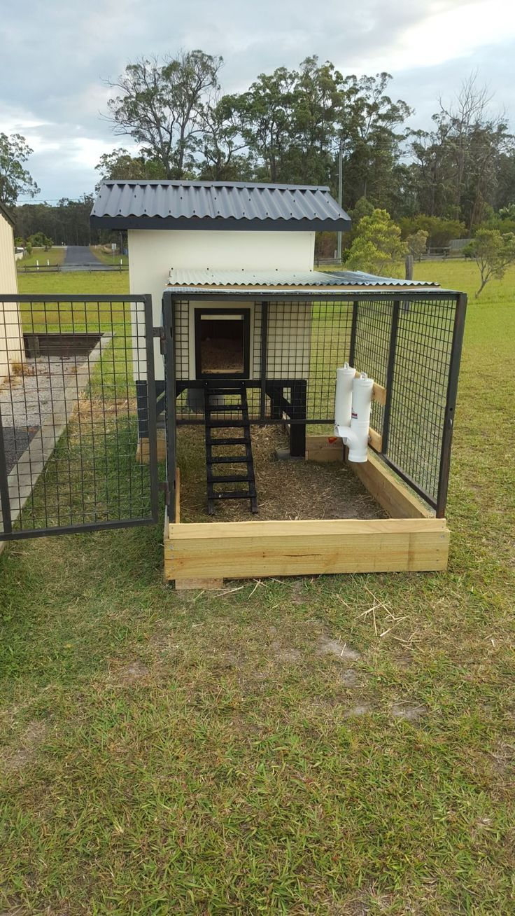 Our Aussie Coop Build A Dog Kennel Cheap How To Build A Dog House In Minecraft Insulated Dog Ho Chickens Backyard Building A Chicken Coop Diy Chicken Coop