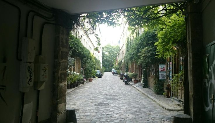 In Paris, a bit of brightness and life in amongst dreary alleyways and electrical grids