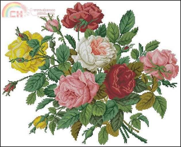 EMS 143 Roses em seu Splendour.jpg