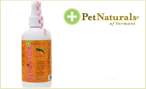 Best Flea Spray For Dogs Nature
