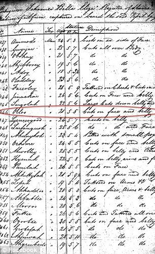 19th century court documents listing the names, ages and boat of African slaves have been turned into a 21st century database enabling people to search for their ancestors and giving slaves an identity. The African slaves, wrenched from their homeland and shipped to America in the 1800s, have been known only as numbers... until now. Called African Origins, the project, a new online database could help trace the roots of more than 100,000 slaves and help give them a proper identity.