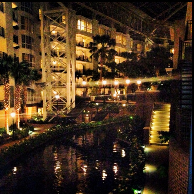 101 Best Gaylord Hotel Images On Pinterest