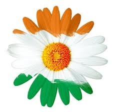 Hence this day is celebrated as Republic Day of India on 26th Jan of every year to honor the date when Constitution of India came into force as the governing document of India.