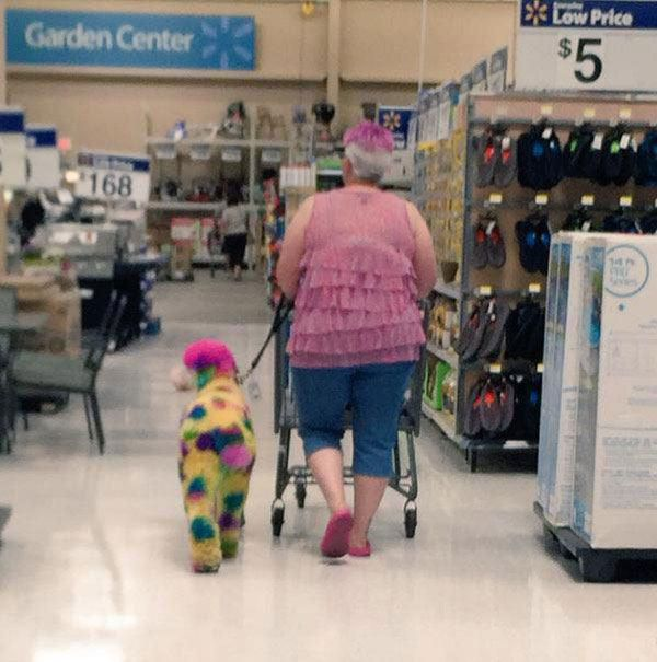 Just A Day At Walmart : theBERRY