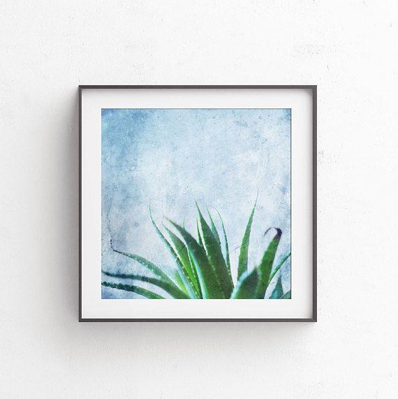 Succulent wall art Cactus photography 12x12 Printable