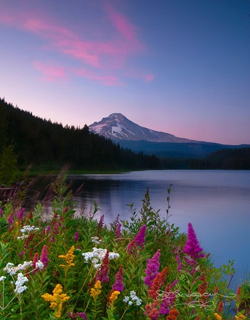 Another beautiful photo of Mount Hood