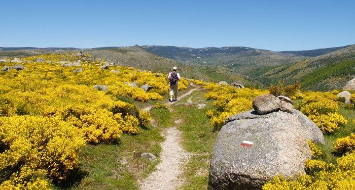 Chemin de Stevenson, randonnée dans le Massif Central