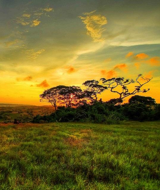 Wakatobi National Park © Deni Yulian http://causes.msn.com/earth_day_2013#section=gallerylong_4