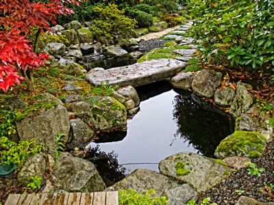 17 best images about koi pond on pinterest japanese for Koi pool water gardens blackpool
