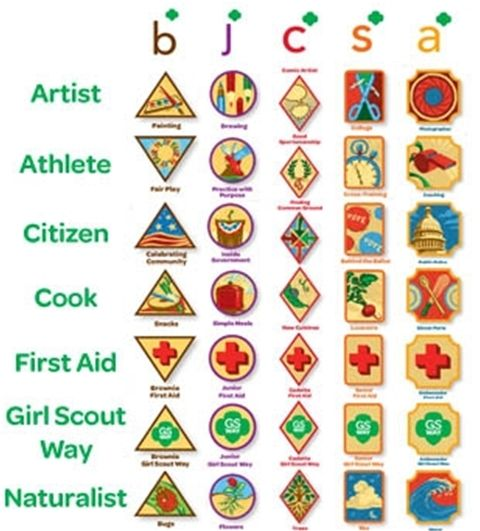 81 best girl scout badges petals pins official gsusa approved legacy badges are based on activities that girl scouts have been doing since there are seven groups of legacy badges artist athlete citizen solutioingenieria Choice Image