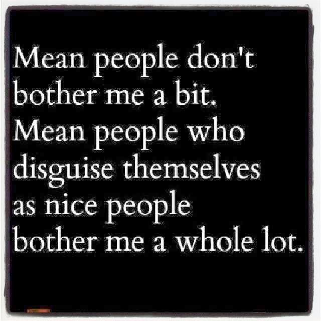 Pretend Christian Quotes | mean people dont bother me a bit mean people who disguise themselves ...