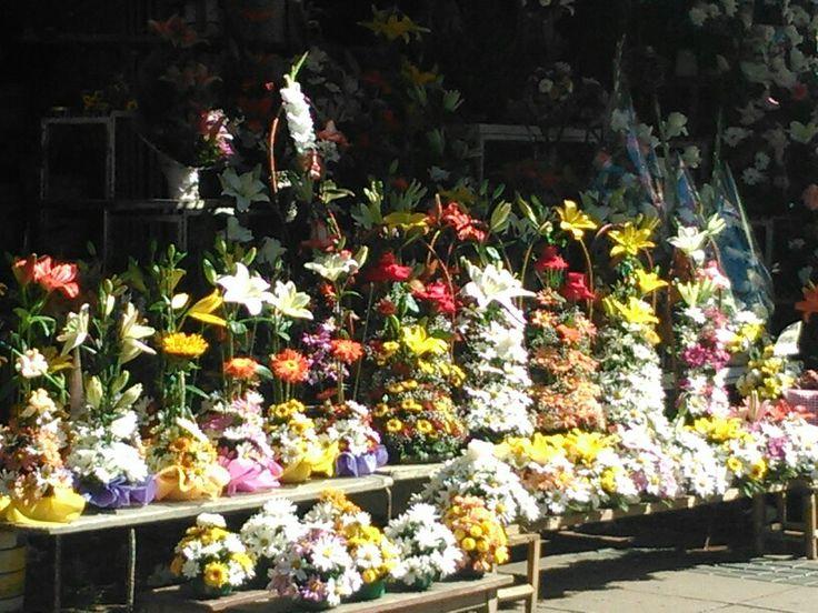 Pérgola de las flores de Concepción