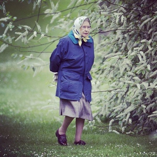 At the brief glance, you just see a granny going to the store... But look closely — she is the British Queen.