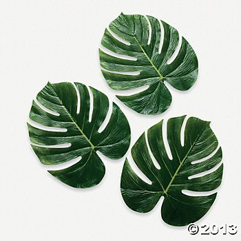 "Palm Leaves. Oriental trading. $8.50 per dozen. 13"" polyester"