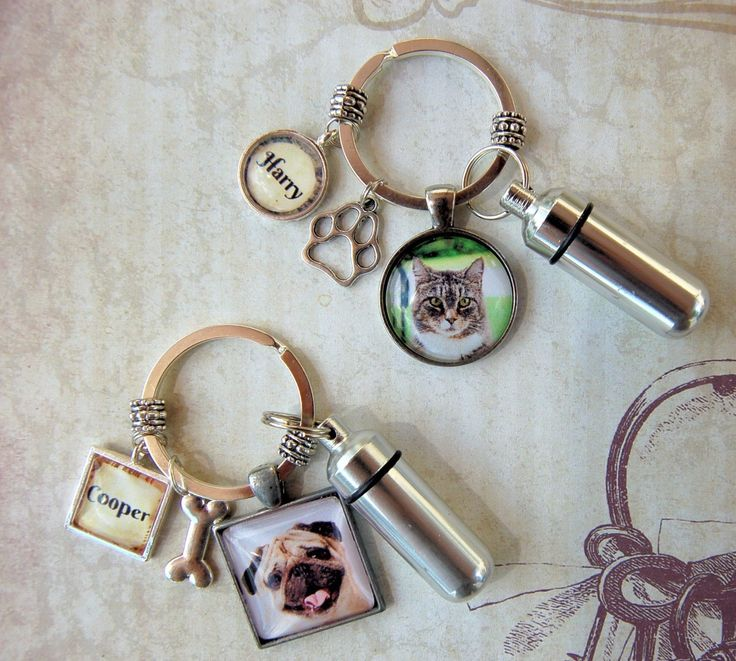 Pet Memorial Key Ring with Custom Photo and Cremation Urn, Loss cat or dog Memory and Remains Ash Container from Amazon