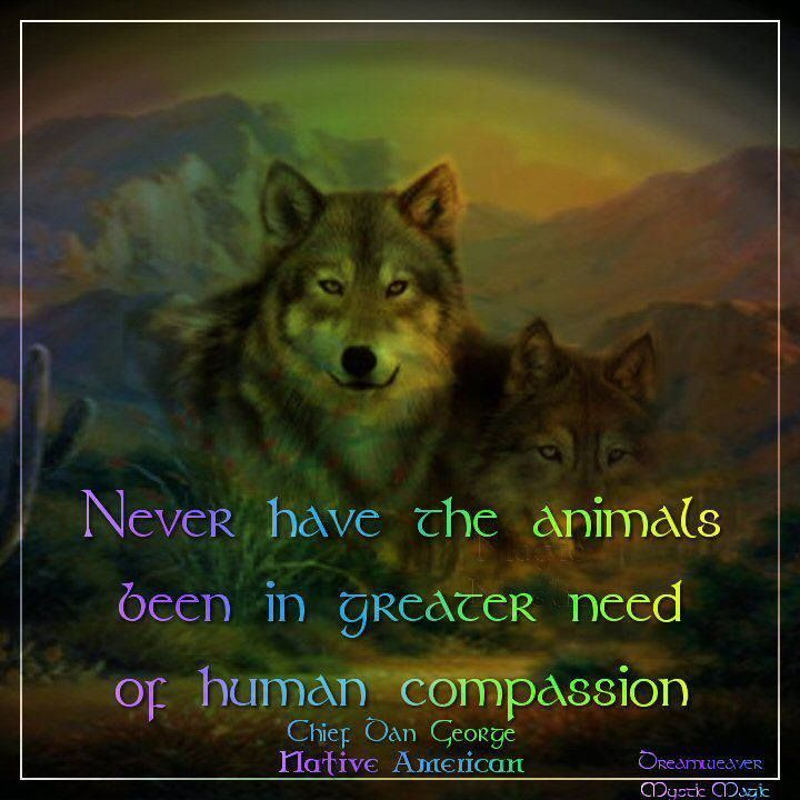native american quotes about wolves | Visit facebook.com ...