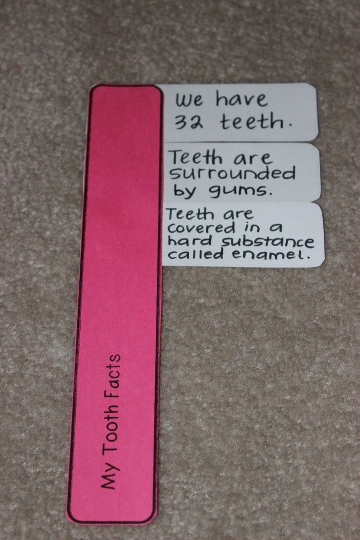 Your teeth ought to last a whole life, it is therefore