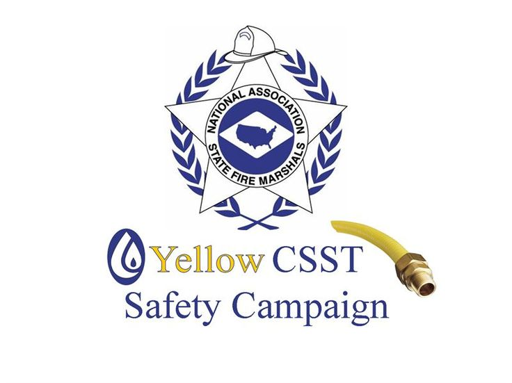 Insurance Trade Joins Important Lightning Safety Campaign